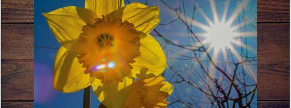 12 - Adventskalender - Herzebrock-Clarholz Kalender