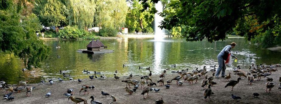 Das sind Eure Lieblingsparks in Wiesbaden