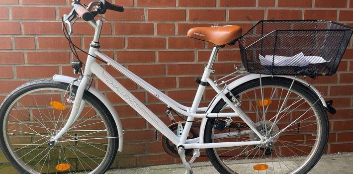 Zwei Fahrraddiebe festgenommen