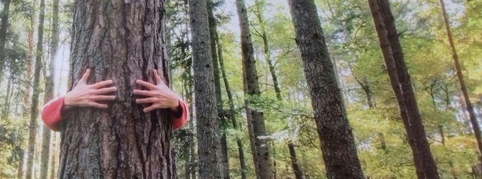 Waldspaziergang der besonderen Art