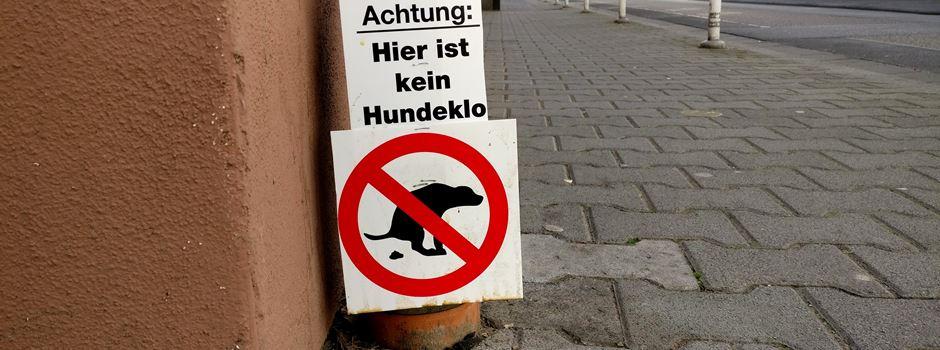 Streit um Hunde-Pipi an Hauswänden – was Haltern droht