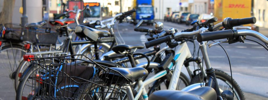Fahrrad-Demo von Mainz-Kastel nach Frankfurt