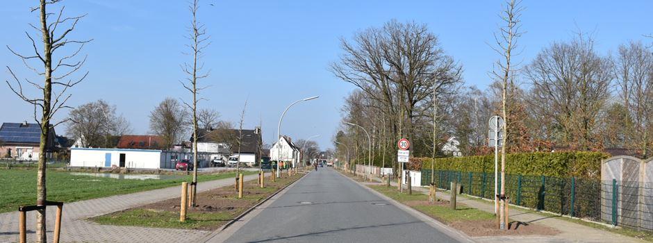 """Brocker Straße"" neu bepflanzt"