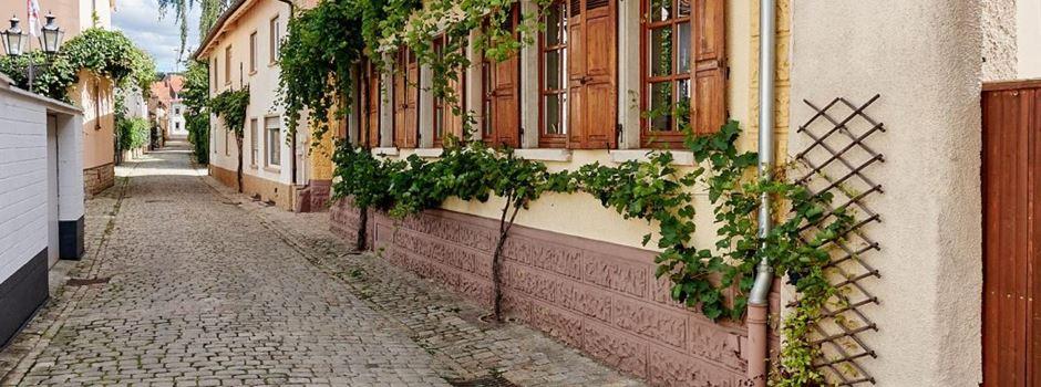 Wandern, Wein und Kulinarik - Die Schweiz liegt in Rheinhessen