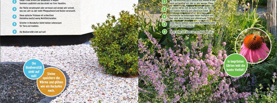 Hitze reduzieren durch bepflanzte Vorgärten