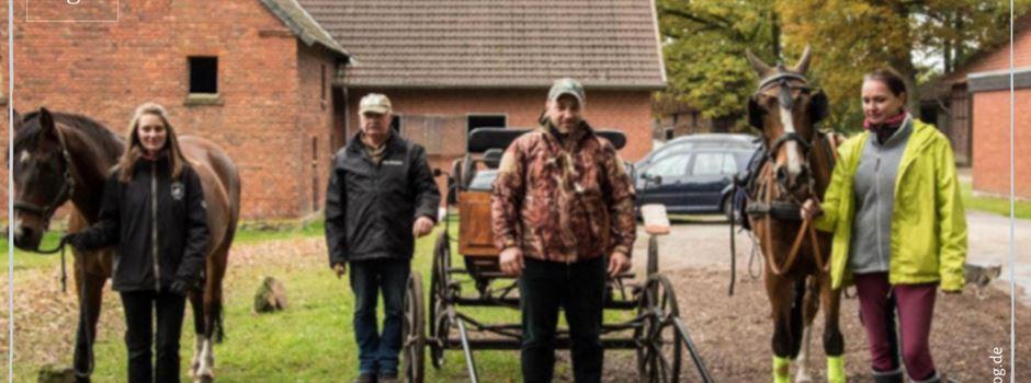 Ausbildung zum Kutschenführerschein läuft auf Hochtouren