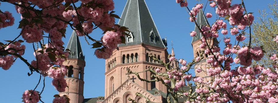 Fünf Ausflugsziele, die man mit dem Frankfurter Semesterticket erreichen kann