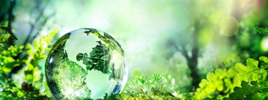 Grünes Geld – nachhaltig anlegen und versichern