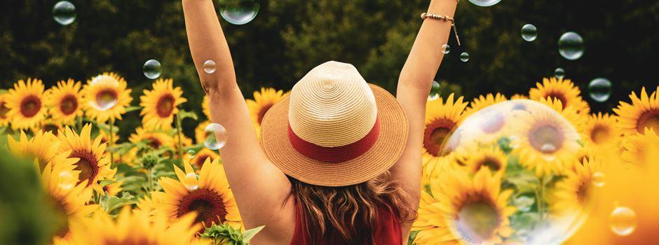 Was kann man im Juli machen, ohne Geld? 4 Hallo-Tipps