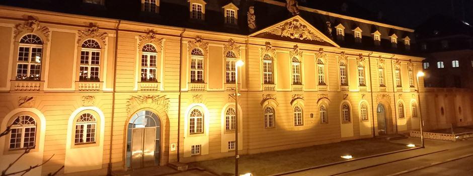 Diese Mainzer ziehen in den Landtag ein