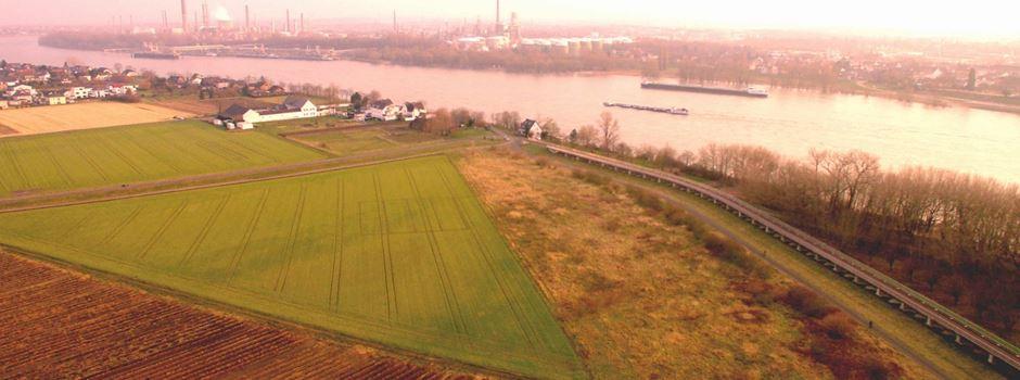 Rheinspange 553 - Weitere Untersuchungen von Straßen.NRW gefordert