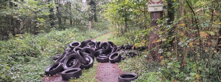 Zweiter Fund: Über 100 alte Autoreifen illegal im Wald entsorgt