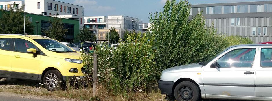Wo kann ich in Mainz günstig parken?