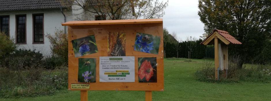 Infotafel soll zu Blühflächen ermutigen