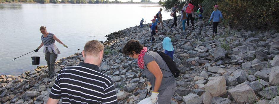 Rhine Cleanup in Oppenheim am 11. September - am Rheinufer und im Wäldchen