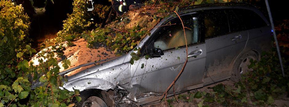 Autofahrerin rast in Weinberg