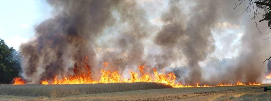 Mähdrescher- und Kornfeldbrand an der Greffener Straße