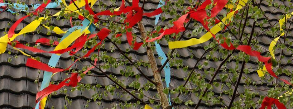Die bunten Maibäume von Niederkassel