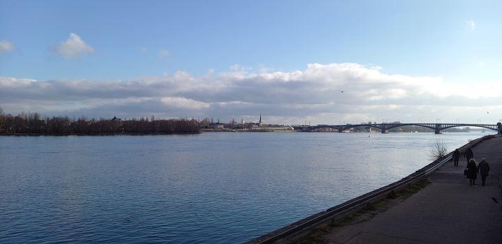 Aufmerksame Zeugen retten Person aus dem Rhein