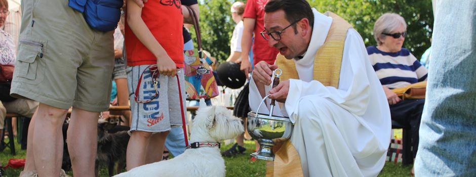Hundesegnung findet am Sonntag in Hechtsheim statt