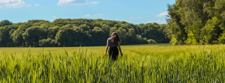 Einen Tag in Aichach: Was ihr unternehmen könnt