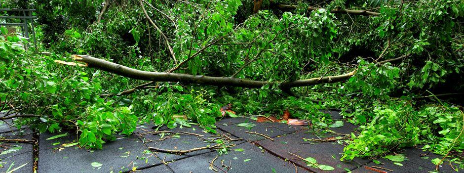 Sturm über Niederkassel angekündigt
