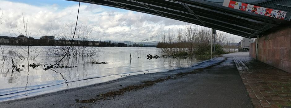 Hochwasser in Mainz: Erste Veranstaltungen abgesagt