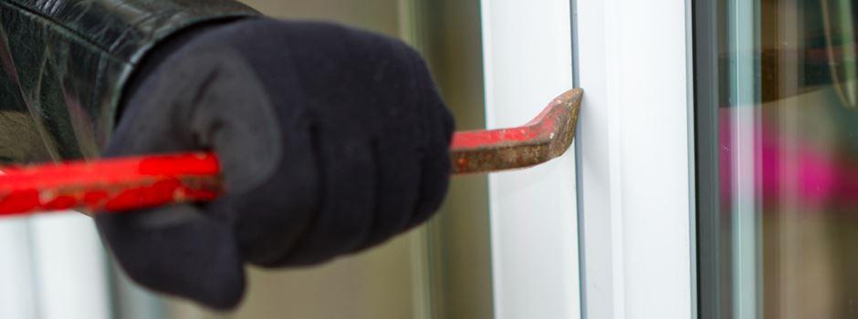 Polizei nimmt jugendliche Einbrecherbande hoch