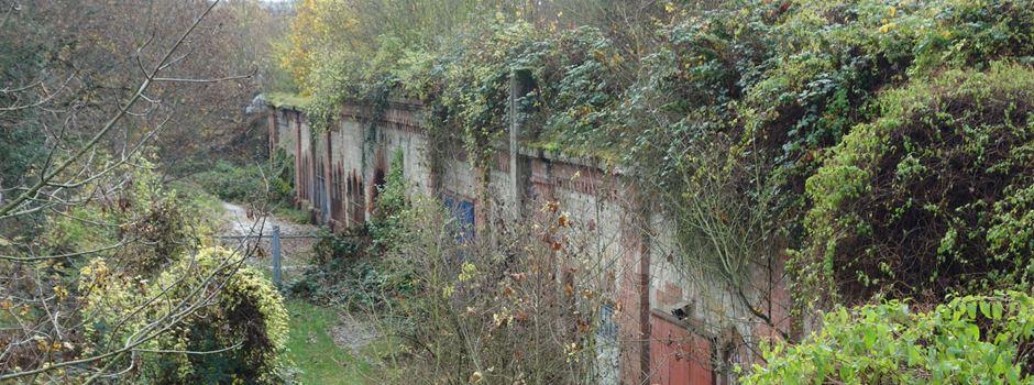Was passiert mit den historischen Forts am Hartenberg?