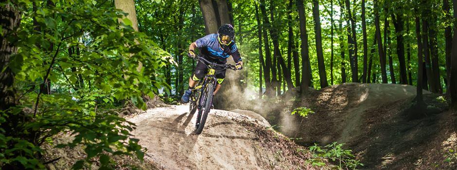 Illegale Mountainbike-Strecken sorgen für Probleme im Wiesbadener Stadtwald