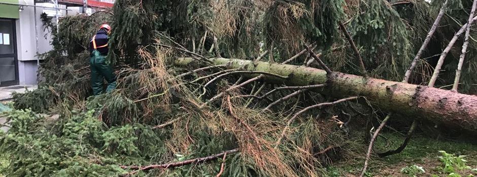 Unwetter über Wiesbaden sorgt für viele Schäden