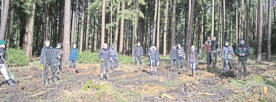 Klimafreunde pflanzen rund 600 Bäume