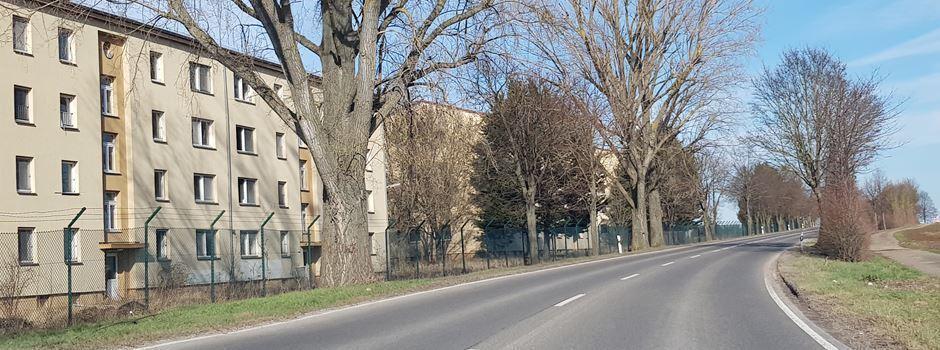 Rhein-Selz-Park: Kreis kontrollierte - Baustopp wird eingehalten