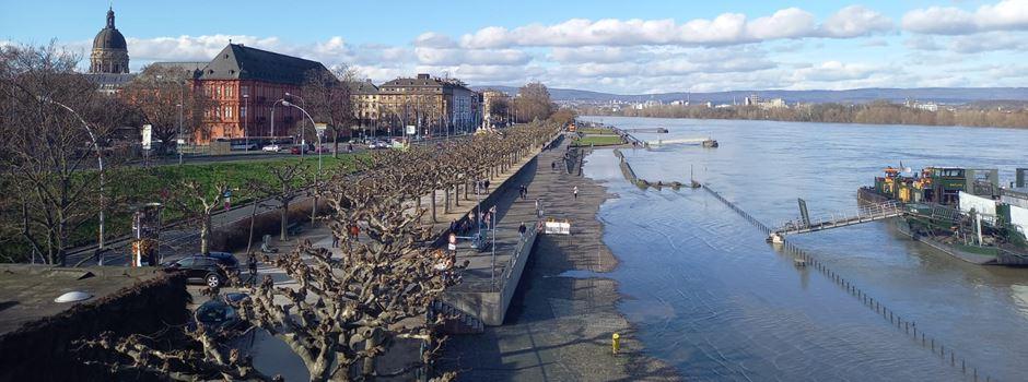 Bildergalerie: So sieht das Rheinufer bei Hochwasser aus