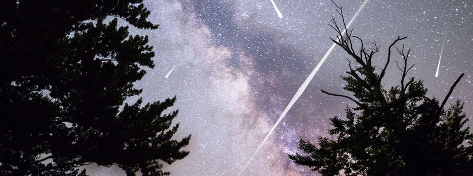 So wird die Sternschnuppen-Nacht in Wiesbaden