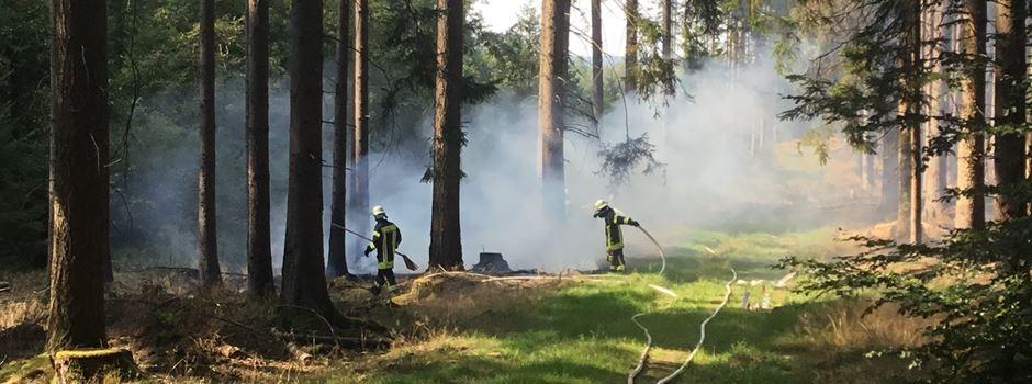 Waldbrand am Jagdschloss Platte