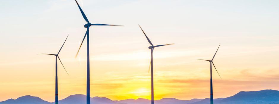 Alle reden von Klimaschutz, aber keiner macht ihn konsequent