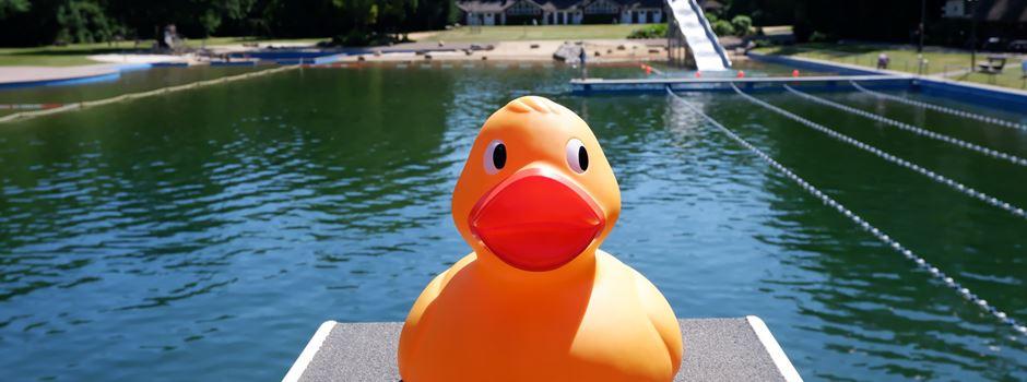 Keine Ente: Endlich wieder Badespaß