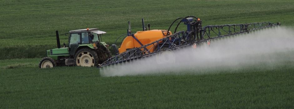 Wiesbaden verbietet Glyphosat auf städtischem Boden
