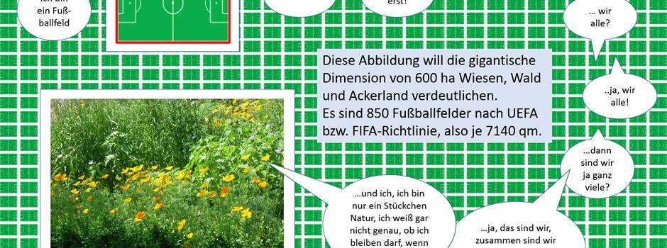 """Leserbrief: """"Ökologische Sünde und ökonomischer Unsinn"""""""