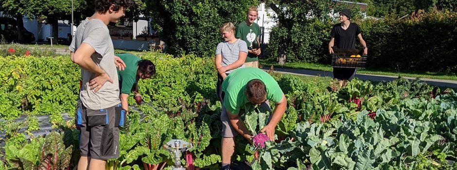 Ade Schnittblumen, Hallo Gemüse! Botanischer Garten hilft Augsburger Tafel durch die Corona-Zeit