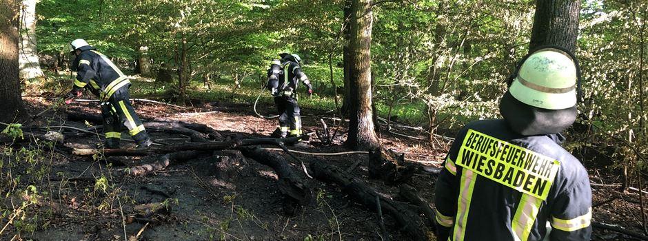 Waldbrand zwischen Dotzheim und Frauenstein