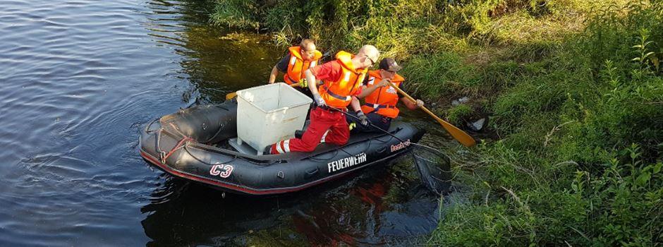 Feuerwehr Herzebrock-Clarholz sammelt tote Fische in der Ems