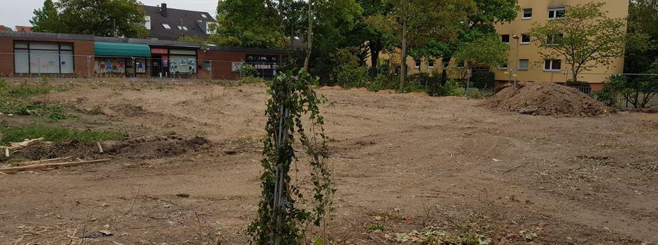 Was auf dem ehemaligen Edeka-Gelände in Hechtsheim entsteht