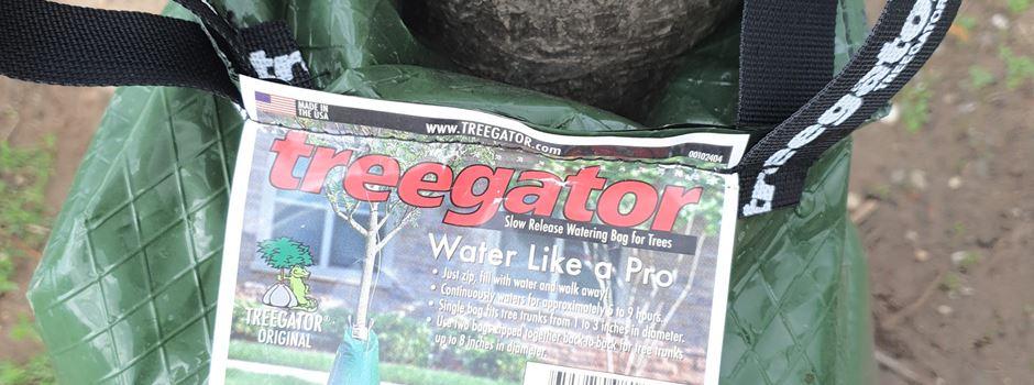 """""""Treegator"""" - ein neues Bewässerungssystem für junge Bäume in Niederkassel"""