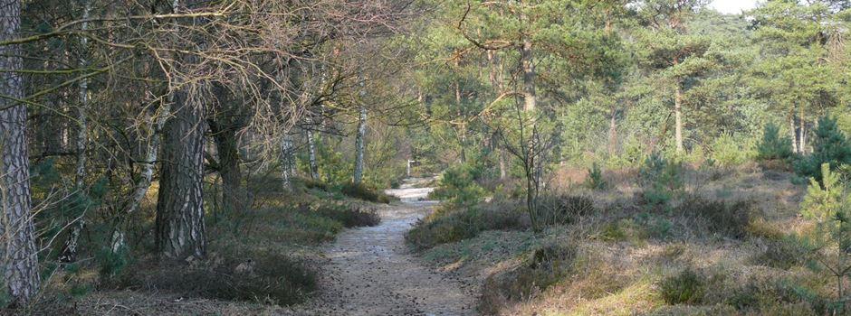 """VNP: Ausreichend Möglichkeiten, sich in der Natur """"aus dem Weg zu gehen"""""""