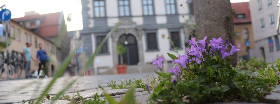 Bella Italia in Augsburg: Hier fühlen wir uns wie im Urlaub