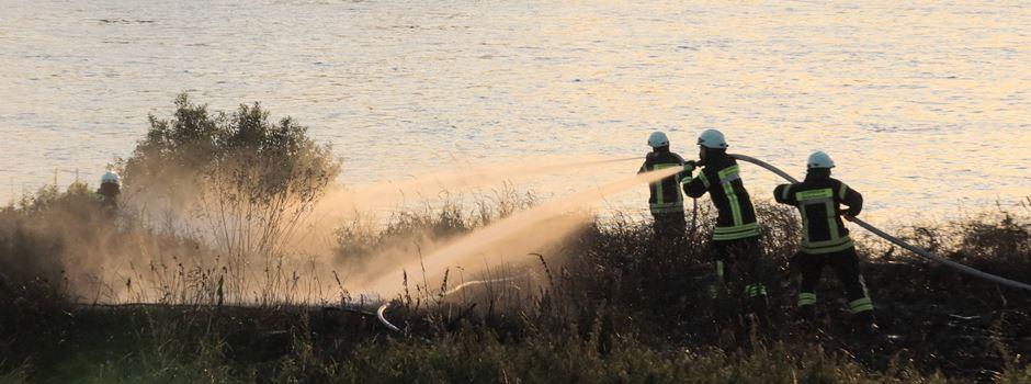 500 qm Böschung am Niederkasseler Rheinufer standen in Flammen