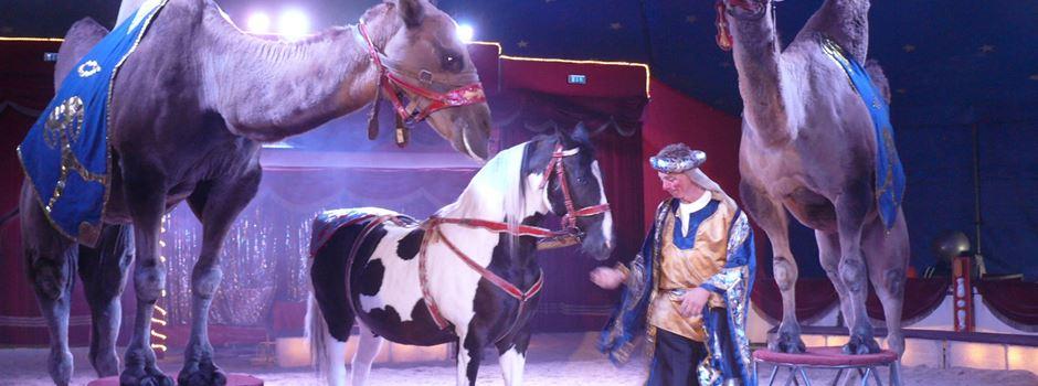 Circus Baruk gastiert in Kaiserslautern