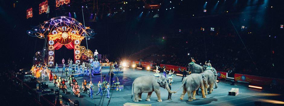 Tiere raus aus dem Zirkus!